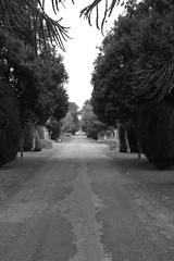The road up to the Mausoleum (Scotsman_in_Hawaii) Tags: scotland angus cemetary mausoleum arbroath memorialchapel westerncemetery