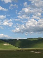 Mongolia? (Fraser P) Tags: flowers italy mountains primavera landscape spring umbria castelluccio pianogrande fiorita