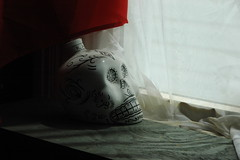 8:AM (Pollards Polaroids) Tags: lighting morning window skull natural vodka aesthetic