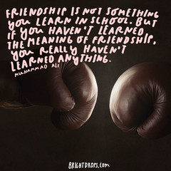 Friendship is not something you learn in school. But if you havent learned the meaning of friendship, you really havent learned anything.  Muhammad Ali (brightdrops) Tags: quotes inspirational muhammadali inspirationalquotes