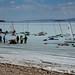 Ice Sailing, Velejando sobre o gelo