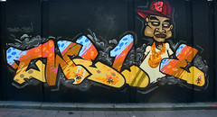 step in the arena 2016 (wojofoto) Tags: streetart holland graffiti nederland eindhoven netherland twelve berenkuil 2016 stepinthearena wolfgangjosten wojofoto