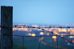Barbed Bokeh (harleykennedy1) Tags: night fence wire bokeh britain barbed a6000