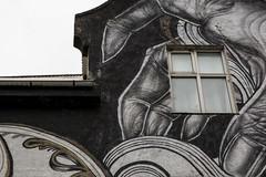 7 - Reykjavic (34) (Yksel85) Tags: nikon reykjavic islanda husavik iceland streetart graffiti murales art strada street affreschi europa waterfall cascate foca foche animali svartifoss soffioni jokulsarlon hofn hverir geyser