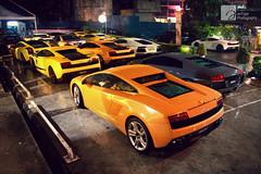 Bull Herd (anType) Tags: italy orange white sports car yellow grey italian asia sl exotic malaysia mercedesbenz pearl kualalumpur penang lamborghini luxury coupe supercar matte v10 gallardo sportscar murcielago v12 lambo superleggera murci lp640 sl55amg worldcars pscc lp5604 arancioborealis aventador arancioymir lp5704 grigiotelesto giallohalys lp7004 biancocanopus