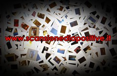 diapositive-negativi (mgvideoproduction.it) Tags: hdv minidv digital8 hi8 diapositive dvcam betamax svhs digitalbetacam vhsc betacamsp video8 dvcprohd betacamsx video2000 super88mm16mm35mmosupportovhs umatic34 umaticbvu negativieavidv