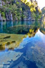 clearwater kayangan lake (mimathology) Tags: travel sea lake nature water tour philippines coron freshwater palawan