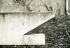 spray-can-eyed-shark (mishes) Tags: street urban bw streetart film analog germany geotagged concrete deutschland graffiti shark blackwhite stencil ishootfilm nrw analogue kodakbw400cn hai bochum allemagne ruhrgebiet yashica nordrheinwestfalen 45mm beton spraycan yashicaelectro35 ruhrpott f17 northrhinewestphalia schwarzweis doitsu yashicaelectro35gt poormansleica anlalog sprühdose