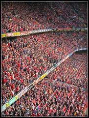 Sea Of Red (Nige (NiiiiiJ)) Tags: wales grandslamchampions welshrugby niiiiij