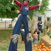 "Jason-Kollum-Scarecrow-Stilts-1 • <a style=""font-size:0.8em;"" href=""http://www.flickr.com/photos/21202399@N05/6859446873/"" target=""_blank"">View on Flickr</a>"