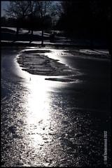 Ice Water Sunlight (Cliffwix) Tags: winter light sun ice water glare pentax michigan kalamazoo 2012 k5 week6 milhampark 522012 52weeksthe2012edition weekoffebruary5
