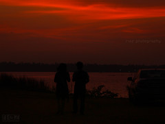 Valentines Day! (riaz photography) Tags: love true photography day m valentines hassan kochi riaz riyas