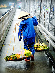 Vietnamese Fruit Seller (jamehand) Tags: bridge rain southeastasia vietnam indochina fruitseller hu lashed trangtienbridge centralvietnam carrybasket