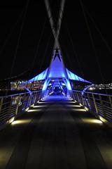 Blue Light Special: Tempe Town Lake Bridge (mark willocks) Tags: bridge arizona lake night tempe nikond90 townlakebridge
