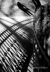 Long_shadows (Voss-Nilsen) Tags: street shadow people urban bw white black silhouette oslo norway architecture contrast canon fence geotagged botanical photography norge photo iron europa europe pattern shadows folk patterns norden silhouettes fences nordic shadowplay arcitecture scandinavia grünerløkka gjerde contrasts siluette tøyen arkitektur architectura monocrome bybilder svart østlandet botanisk contrasting skygge mønster skandinavia hverdagsliv monokrom svarthvitt siluett mennesker shiluette svarthvit gatebilder tøyenhagen skygger wroght digitalfoto mønstre østkanten siluetter silluett smijern oslobilder skyggespill silluetter gjerder svarthvittbilder botaniks svarthvittbilde vossnilsen