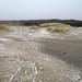 Dunes of Voorne, Duinen van Voorne, Little bit snow