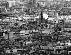 DSCF0601 (Chris_J_L) Tags: bw paris france skyline rooftops