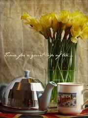 Time for tea (MuffinMummy) Tags: blue green texture cup glass yellow spring pretty tea steel text fresh mug font vase teapot teacup daffodils dafont villeroybosch kimklassen kimyouaresotops timeforaquietcupoftea