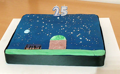 """The 25th Cake • <a style=""""font-size:0.8em;"""" href=""""http://www.flickr.com/photos/74627054@N08/6937954543/"""" target=""""_blank"""">View on Flickr</a>"""