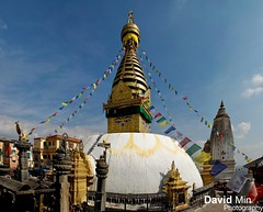 Kathmandu, Nepal - Swayambhunath Temple (GlobeTrotter 2000) Tags: world travel nepal vacation heritage tourism expedition trek nose temple monkey eyes shrine asia buddha stupa buddhism visit tibet unesco adventure explore monastery tibetan kathmandu boudhanath pilgrimage swayambhunath hindus newari katmandou