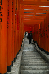 Shinto shrine archway (Masa ~(:-D)) Tags: japan stairs shrine tunnel archway shinto