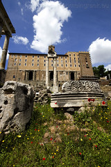 """Roman Forum • <a style=""""font-size:0.8em;"""" href=""""http://www.flickr.com/photos/89679026@N00/6970748090/"""" target=""""_blank"""">View on Flickr</a>"""