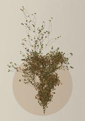 L-System Plant (Diana Lange) Tags: plant tree nature graphics generative processing fractal lsystem natureofcode gestaltung processingorg lindenmayer