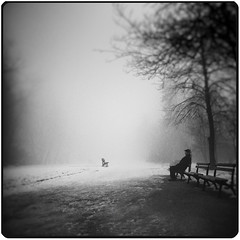 Back To Me (Slavin@ (back)) Tags: blackandwhite bw mist man tree monochrome fog bench square ghost dream surreal best explore squareformat lonely