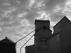 Dawn in Downey (David Sebben) Tags: white black mill clouds dawn iowa feed downey supersweet