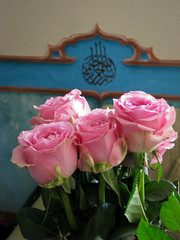 Delightful! adoro rosas!  IMG_2165 (andrey.salikov) Tags: beautiful composition cool nice colours shot details great captured moment rosas delightful adoro