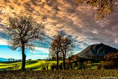 Italian country (Luca-Anconetani) Tags: trees italy panorama mountain nature alberi clouds landscapes nikon italia nuvole country meadow campagna montagna marche d610 prati campagnamaceratese lucaanconetani