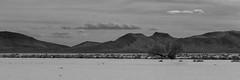 Dry lake near sunset (joeqc) Tags: blackandwhite bw white lake black mountains tree blancoynegro monochrome canon mono nevada dry nv 6d delamar greytones