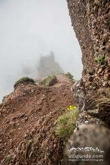 Nebel an der Nagelfluhkette (ulligunde.com - Bergsport.Reisen.Fotografie) Tags: nagelfluh nagelfluhkette nebel sturm allgu immenstadt sonthofen laufen running trail stuiben