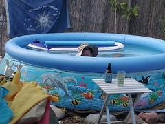 Chad, June 12 (EllenJo) Tags: summer pool backyard pentax chad floating june12 2016 saltwaterpool ellenjo ellenjoroberts june2016 pentaxqs1