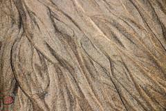 sandwaves (gov_phil) Tags: sand sable