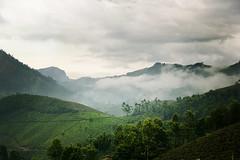 Munnar (dilraj panakkal.....loves photography) Tags: travel india kerala munnar