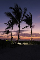 Turks and Caicos Sunset (russ david) Tags: trees sunset island islands palm turks caicos