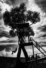 Casa del Arbol (Stephan Harmes) Tags: sky bw white house black tree dramatic himmel swing sw schwarz schaukel weis baumhaus dramatik