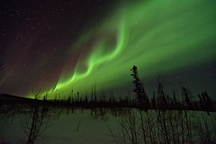 Waves (Lee Petersen) Tags: alaska spring nightsky tundra northernlights auroraborealis taiga chenariverrecreationarea