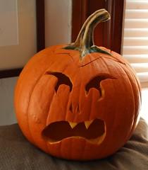 (spotboslow) Tags: halloween pumpkin pumpkins jackolantern watertown massachusetts