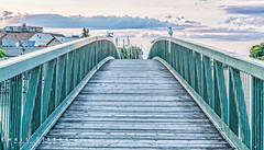 The Seagull Bridge (Chris Liszak Photography) Tags: canada color colour bird nature birds wow niagara sharp stunning hdr portdalhousie nikond7100 chrisliszakphotography