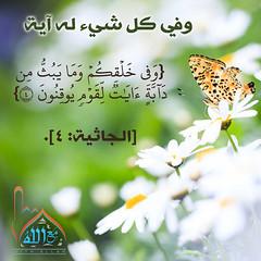 30 (ar.islamkingdom) Tags: الله ، مكان القلب الايمان مكتبة أسماء المؤمنين اسماء بالله، الحسنى، الكتب، اسماءالله
