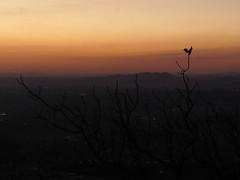 IMG_3629 (ninagmc) Tags: parque sunset pordosol brazil sky sun sol nature night canon landscape freedom daylight air natureza paisagem cu fresh vista noite tarde montanhas bh sx50