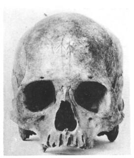 Easter island skull.