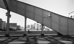 on the bridge (Snap Shooter jp) Tags: street leica bridge light shadow blackandwhite bw film monochrome bicycle japan tokyo snapshot rangefinder snap 150 m4 blackdiamond fomapan kachidokibashi r09 leicasummilux35mmf14 action400 flickrestrellas mygearandme