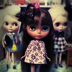 Lucca, Luna and Becca