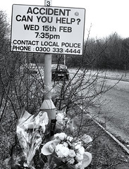 Sign of the Times (Christopher A Strickland Photography) Tags: accident roadside tragedy wreck traffic flowers memoriam death sign police appeal help roadway carcrash automobile fatality careless wreckless vehicles roadcrossing pedestriancrossing cycleroute braintree essex awareness reality danger drivinghazards blackandwhite streetphotography candidphotography people life everyday candidportraits snapshotoflife reallife sliceoflife myessex eastanglia england britain unitedkingdom sonycybershoth1 carlzeisslens photographybychristopherstrickland documentary photojournalism journalistic