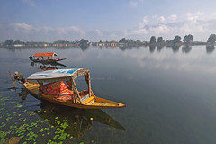 (*iris-hues*) Tags: blue sky woman india lake mountains canon quiet peace photographer image horizon stock tourist calm traveller waters srinagar boatrides shikara pristine jammukashmir lakenagin colourfulboats eos7d glasslighthues gettyimagesindiaq3 gettyimagesindiaq4 glhartdecor