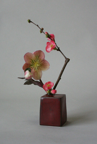 Miniature ikebana-helleborus and quince