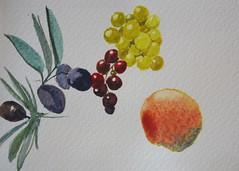 Fruits Study (noriko.stardust) Tags: art watercolor notebook journal blogger study watercolour journaling notebookism